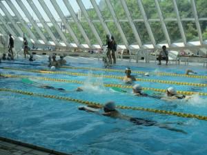 グループ毎で泳法が違ったりします。